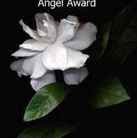 2 Angel Award / Árbol en tierras salvajes (07.05.14) - Pablo Tassani (08.05.14)